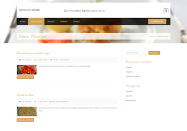 Realisation astuces-cuisine, webmastering